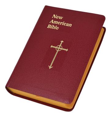 Catholic New American Bilbe